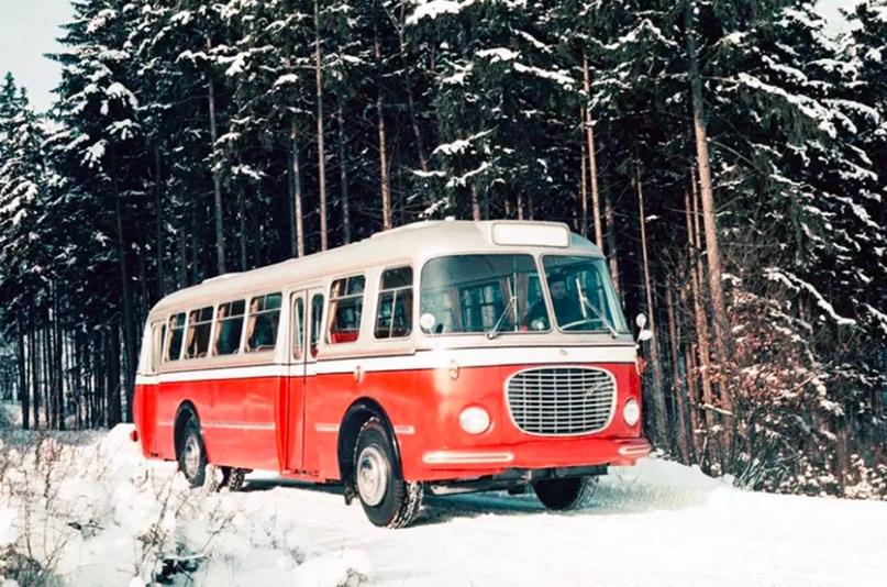 Автобусы, в которые можно влюбиться, изображение №1